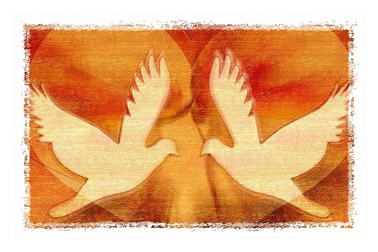 peace-dove-588081_1280